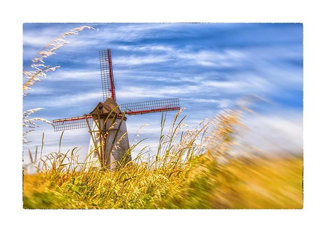 Le moulin est dans le pré