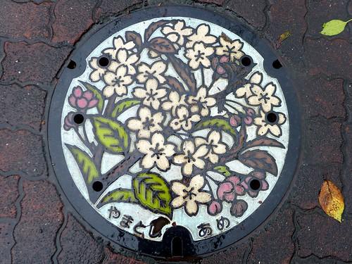 Yamato Kanagawa, manhole cover 2(神奈川県大和市のマンホール2)