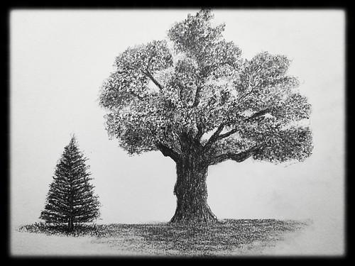 Two trees. From Artist Spotlight: Melanie Whitson, MelArt Scotland