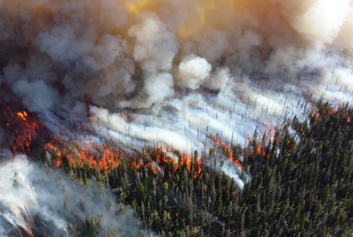 Wildfires are becoming more prolific and devastating. A Los Alamos study reveals dynamics that help practitioners predict and prevent fire. (Photo Credit: Courtesy of National Park Service)