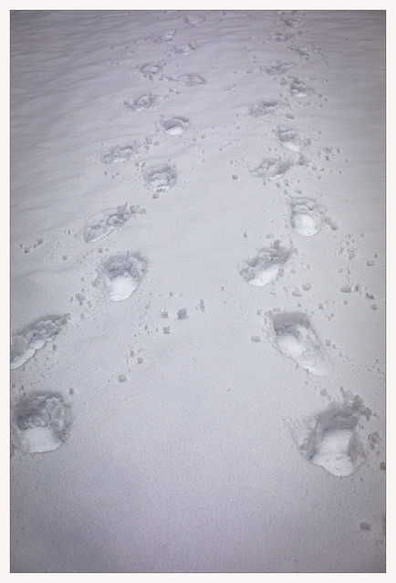 foot marks in snow.
