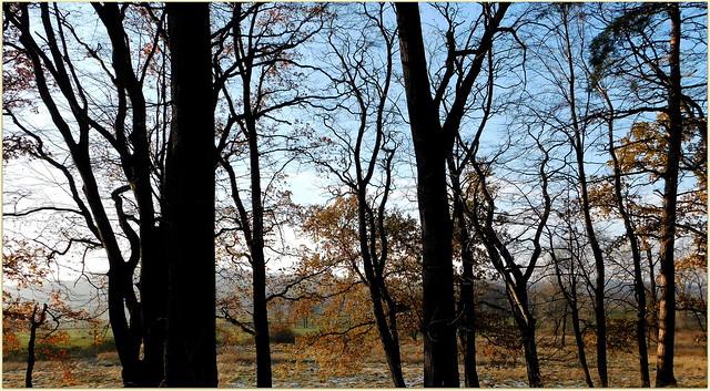 Ostatnie dni jesieni  * EXPLORE