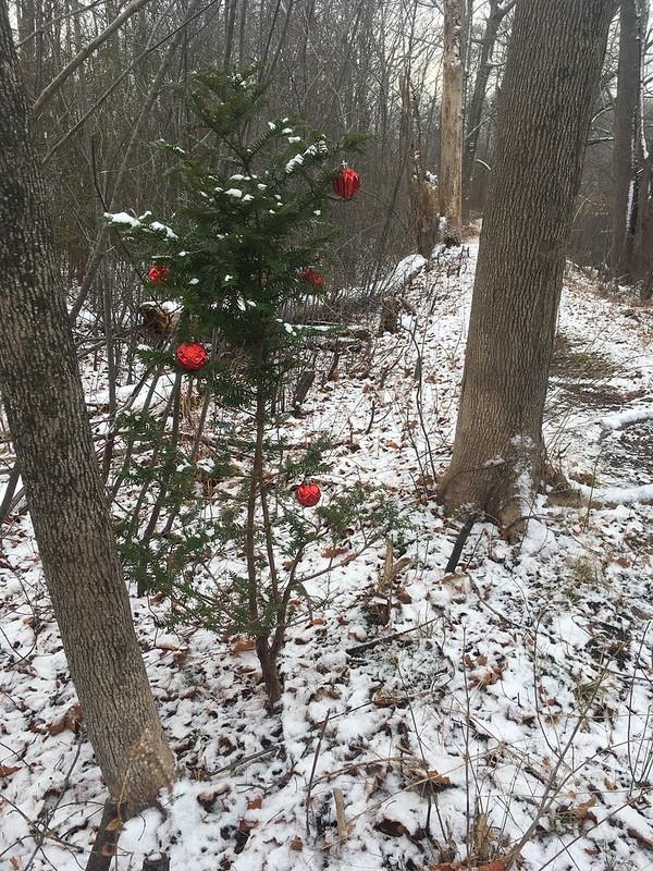 Outside in January