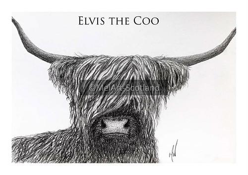 Elvis the coo. From Artist Spotlight: Melanie Whitson, MelArt Scotland