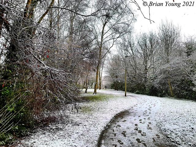 Footprints in the snow. Cottam, near Preston, Lancashire.