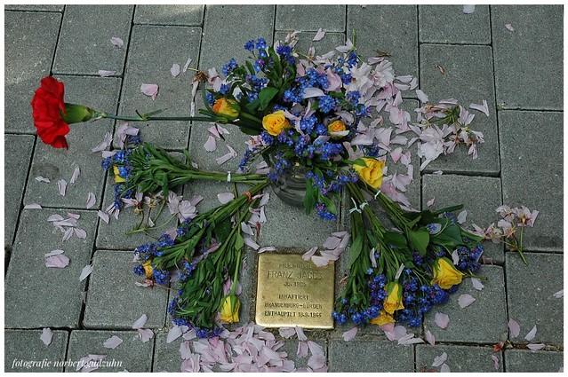 Stolpersteine - Internationaler Tag des Gedenkens an die Opfer des Holocaust
