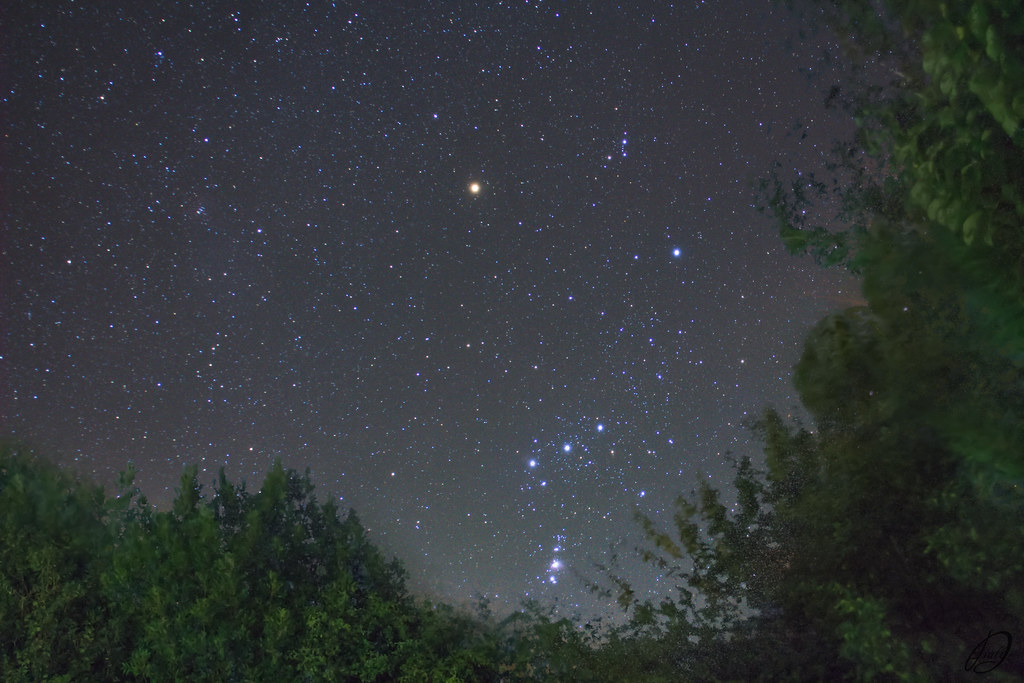 Orion 23-01-21