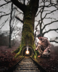 """""""Journey In The Woods"""""""