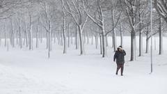 Blizzard, Uppsala, January 25, 2021