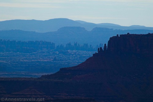 Close up of the Needles from the Lathrop Trail in Island in the Sky, Canyonlands National Park, Utah
