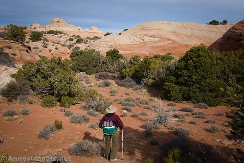 Hiking back up into the slickrock area on the Lathrop Trail, Canyonlands National Park, Utah
