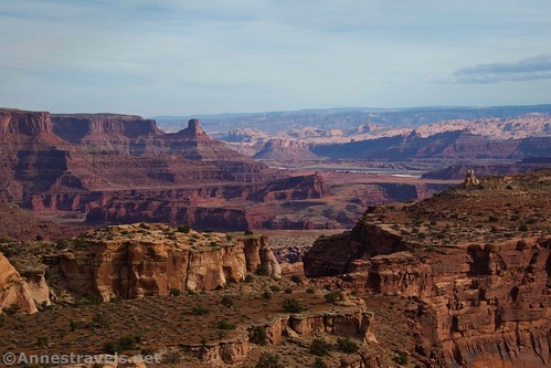Looking north from the Lathrop Trail, Canyonlands National Park, Utah