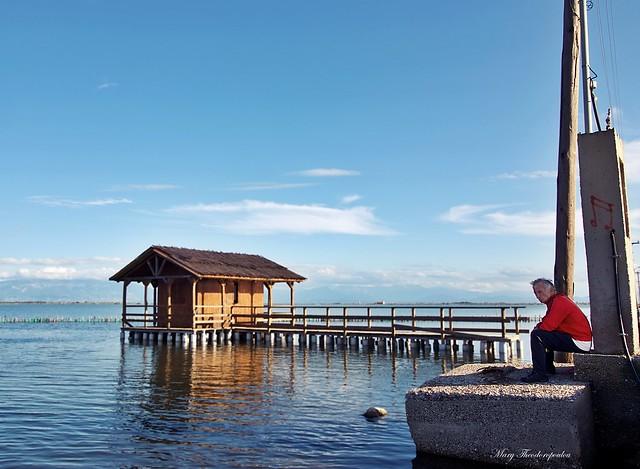 Mesologgi lagoon