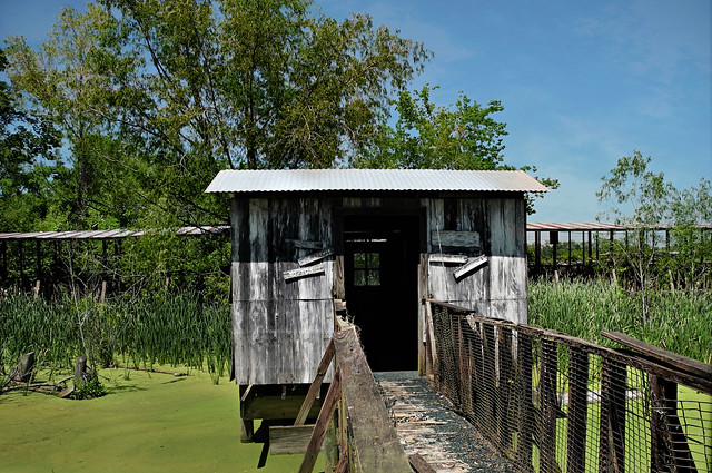 Shack in the Ameline Marsh