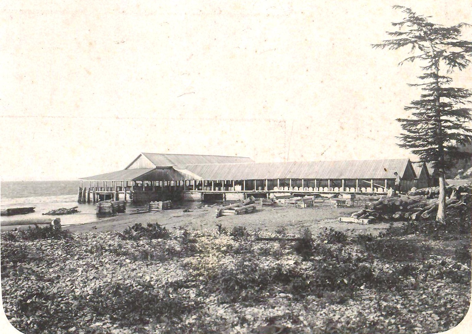 10. Пристань для выгрузки рыбы у консервного завода Мюллера.