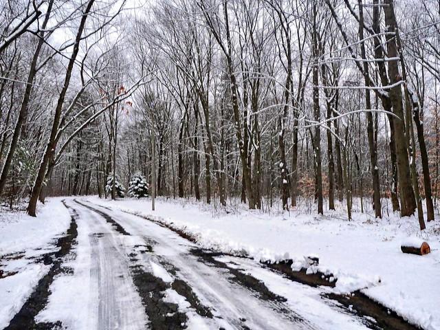 P1000561 Possible Snow Flurries