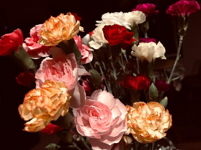 Thursday Flowers