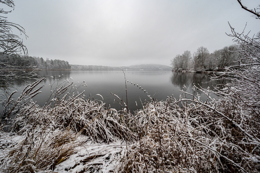A cloudy winter day at the Dechsendorfer Weiher - 9468