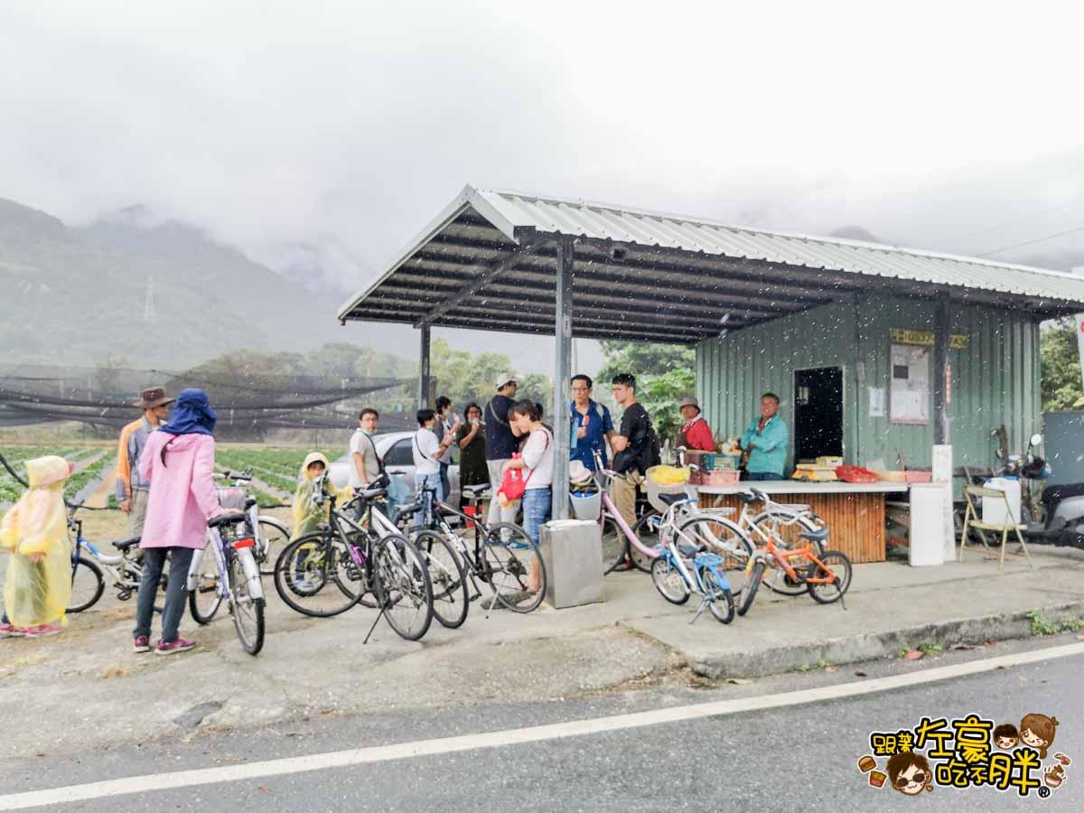 台東關山親水公園 關山腳踏車-38