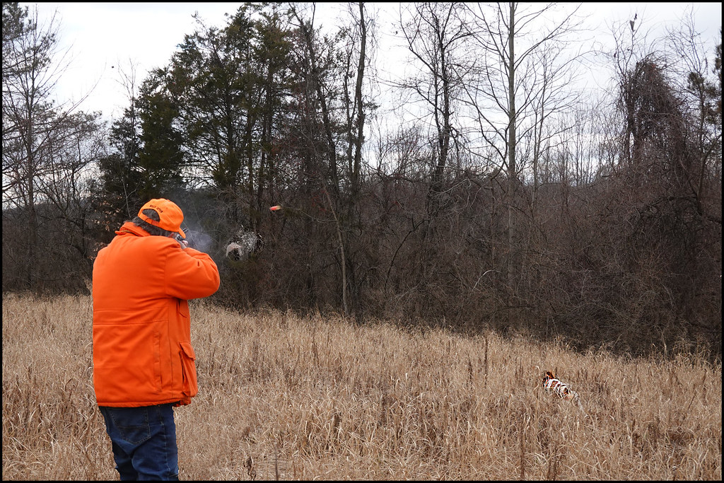 1-27-21 - Training Day - Me taking a bird with the 28 gauge