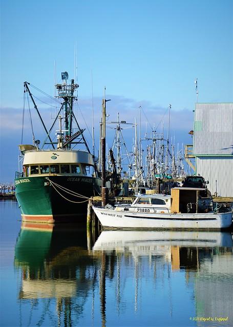 Steveston, BC - Fishing Boats At Rest