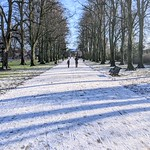Shadows at a snowy Haslam Park, Preston