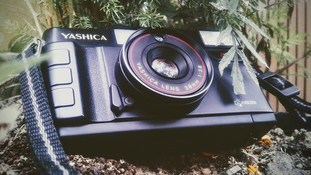 Mommy's Cam :D