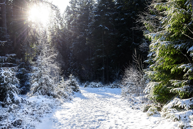 Hiking in winter wonderland, Vestby, Norway