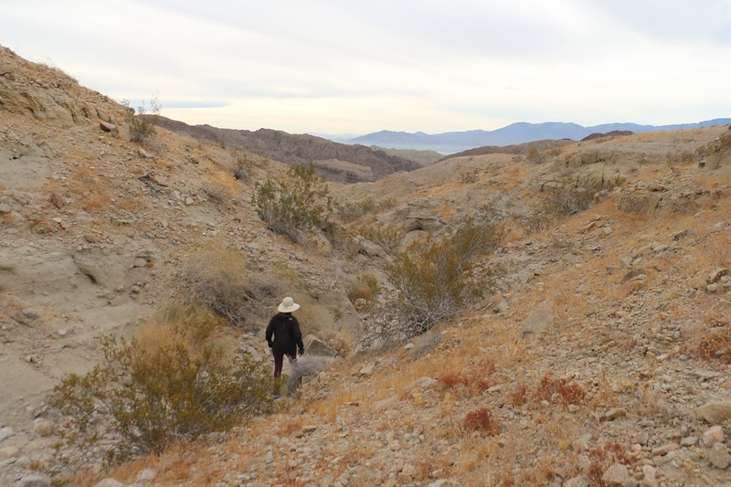 Heading downhill into upper Ladder Canyon from the Ridge Trail