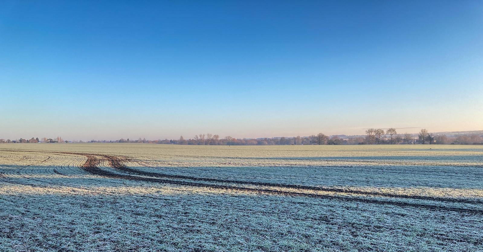 Frosty Tracks