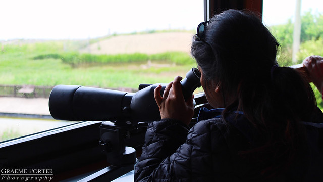 Spotter In The Hide - IMG_4999 - Edited