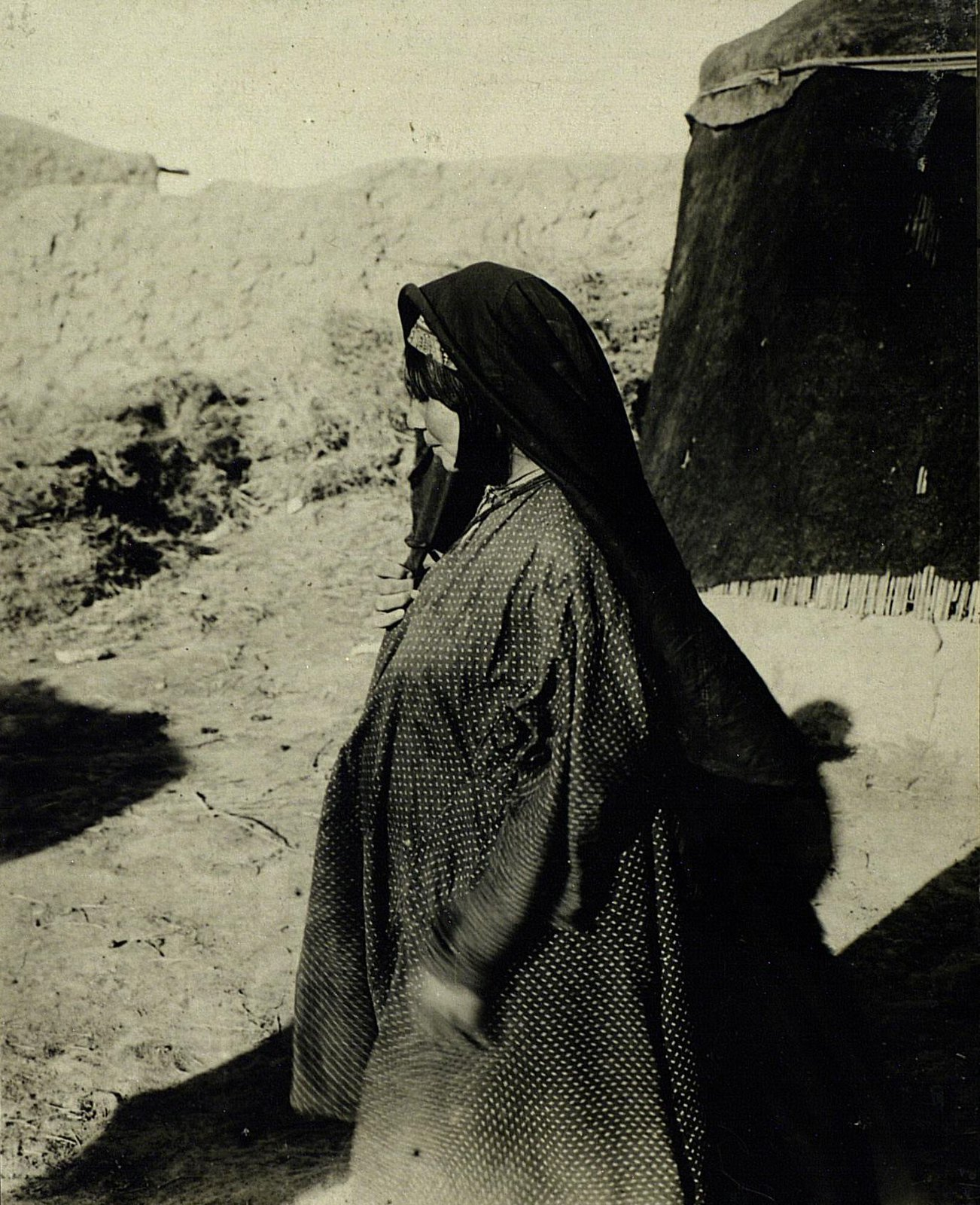 Молодая хазарейка (профиль)