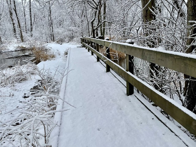 Winter in Indiana (26)