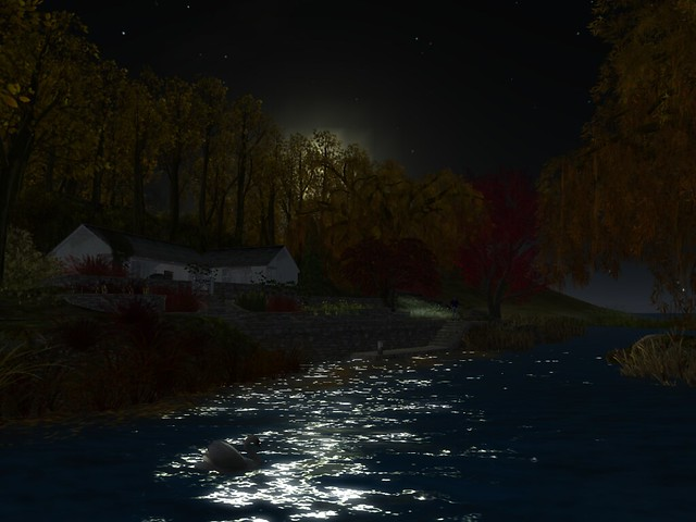 Night on the river