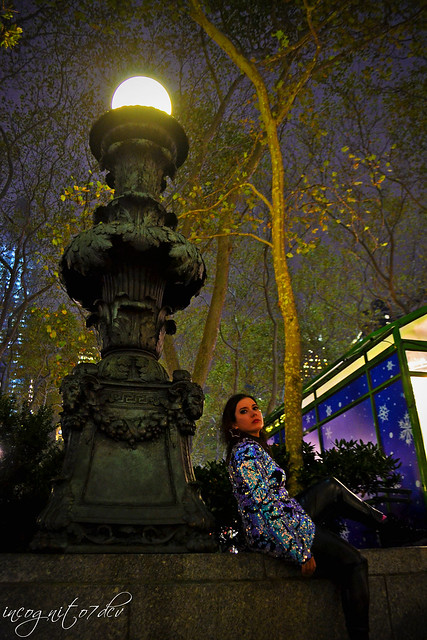 Me & Beautiful Bryant Park Lamp Post at Night Midtown Manhattan New York City NY P00787 DSC_3534