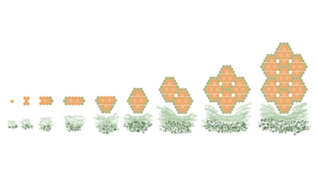 Diagram showing how the community hive can grow by adding more hexagonal bamboo structures.