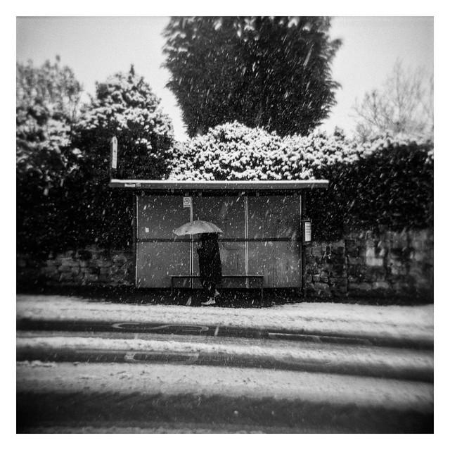 Walking on snowy days