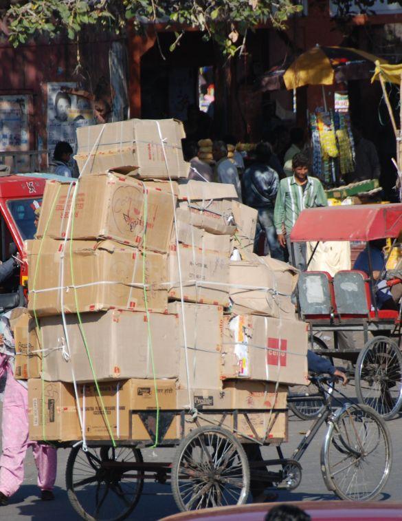 DSC_2594IndiaRajasthanJaipur