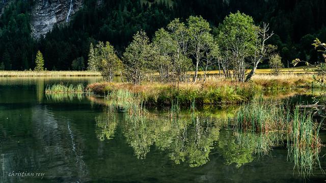 Nature automnale (Switzerland)