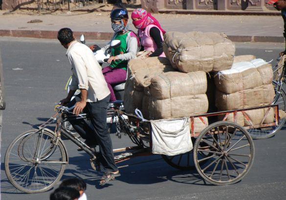 DSC_2595IndiaRajasthanJaipur