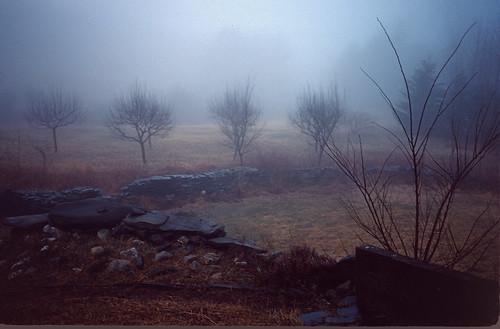Stone Walls in Fog