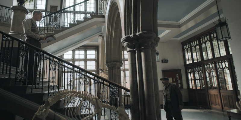 Ipswich Museum hall