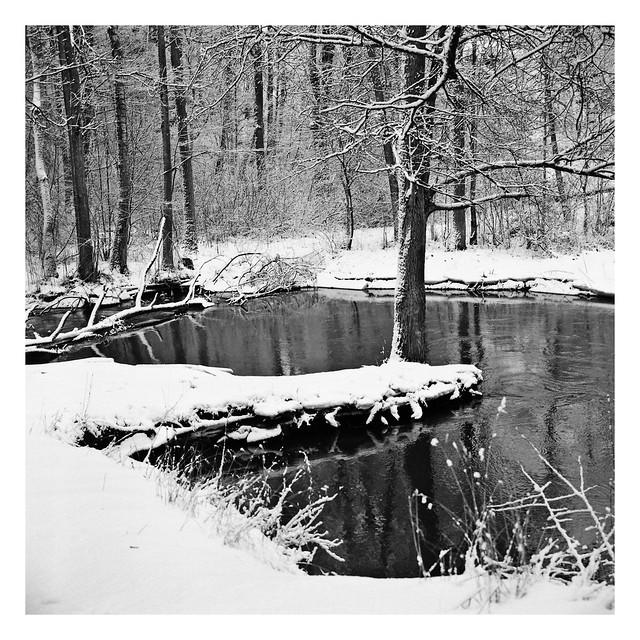 Park nad Symsarną - Cittaslow LW (3)