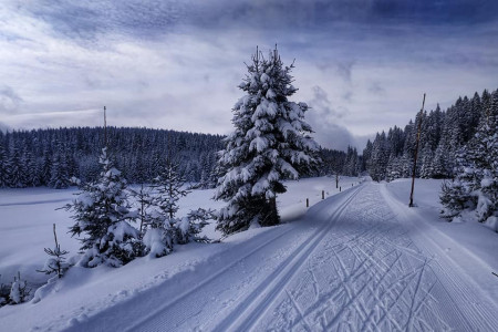 Sněhové podmínky pro běžky stále ideální