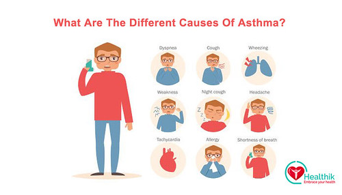 What Are The Different Causes Of Asthma?
