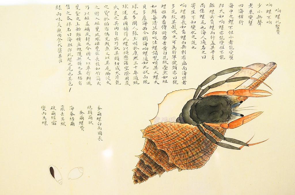響螺化蟹贊-0001