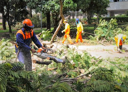 Novacap continua limpando estragos provocados pela chuva