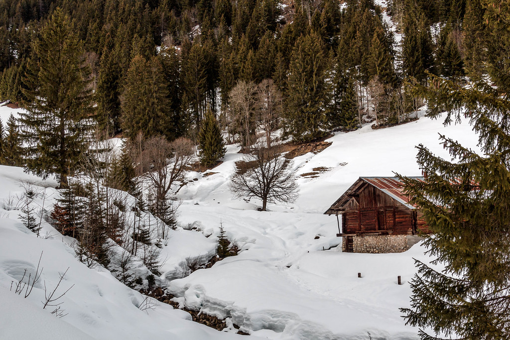 Grange d'alpages. La Chapelle d'Abondance. Chablais. Haute Savoie.