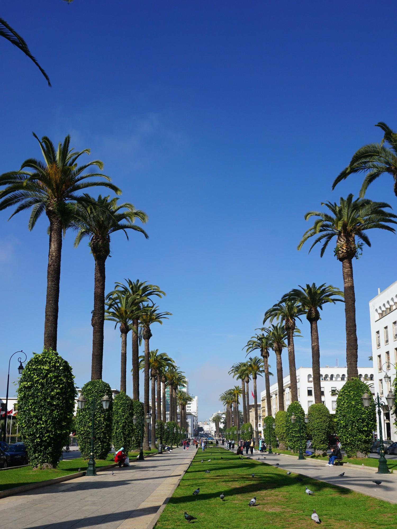 Rabat Ave Mohammed V
