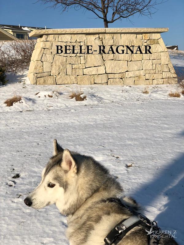 IMG_3120Belle-Ragnar
